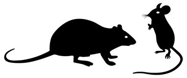 Mouse and rat. Black mouse and rat silhouettes on white background. Vector illustration Stock Photography