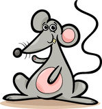 Mouse or rat animal cartoon illustration Royalty Free Stock Photo
