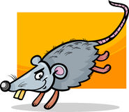 Mouse or rat cartoon illustration Royalty Free Stock Photos