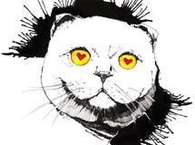 Mouse saporito negli occhi del gatto Immagini Stock Libere da Diritti