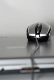 Mouse on a silver laptop Stock Images