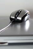 Mouse on a silver laptop Royalty Free Stock Photo