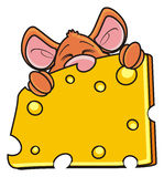 Mouse sleeping and hugging one piece of cheese Royalty Free Stock Photos