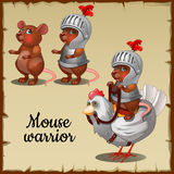 Mouse in steel armor on the chicken Stock Image