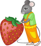 Mouse with strawberry. Stock Photo