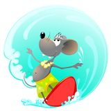 Mouse on Surfing Board. Vector mouse on Surfing Board Royalty Free Stock Images