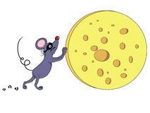 Mouse thief stealing chees Royalty Free Stock Photos