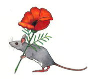 Mouse Toting Flower: Color Pencil. Color pencil drawing of a mouse carrying a large, red flower Stock Images