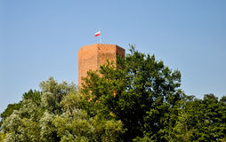 Mouse Tower in Kruszwica, Poland Royalty Free Stock Image