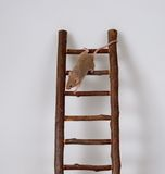 Mouse on a toy staircase. Little brown mouse climbing toy staircase, isolated on gray background royalty free stock images