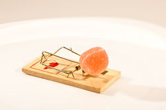 Mouse trap. Concept series: mouse trap with sweet jelly candy Stock Images