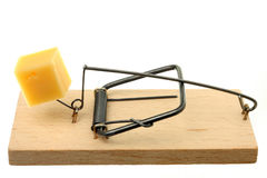 Mouse trap. With cheese against white background Royalty Free Stock Photography