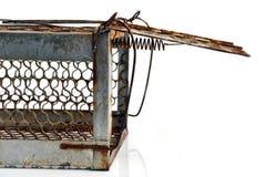 Mouse trap Stock Photos