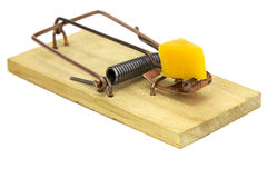 Mouse Trap. Isolated on a white background Royalty Free Stock Photos