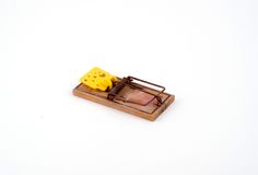 Mouse trap. An isolated old mouse trap royalty free stock photo