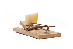 Mouse trap Stock Photo