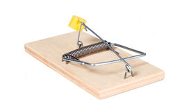 A mouse trap with cheese Stock Photo