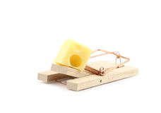 Mouse trap with cheese isolated Stock Photography