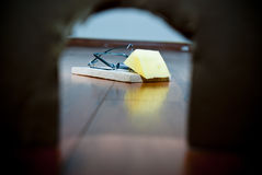 Mouse trap. With cheese set next to mouse house. Mouse perspective Stock Images