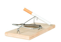 A mouse trap with cigarette Royalty Free Stock Image