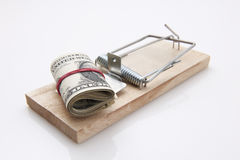 Mouse Trap dollar bill Royalty Free Stock Photography