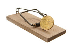 Mouse trap with euro cent coin Stock Image