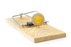 Mouse trap with Euro coin Royalty Free Stock Photography