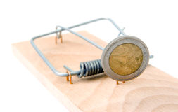 Mouse trap with Euro coin Stock Photography