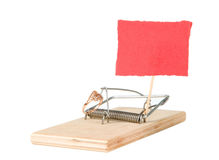 A mouse trap with golden ring Royalty Free Stock Photo