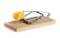 Mouse trap isolated on a white background.  royalty free stock photo