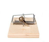 A mouse trap with keys Royalty Free Stock Image