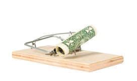 A mouse trap with money Stock Images