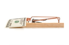 Mouse trap with money as bait Stock Image