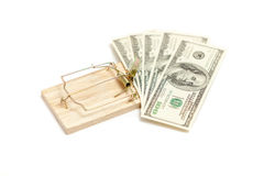 Mouse trap with money as bait Royalty Free Stock Photos