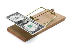 Mouse trap with money as incentive Royalty Free Stock Photos