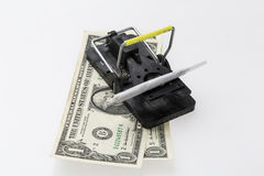 Mouse trap with money and drug Stock Photo