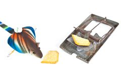Mouse and trap old Stock Image