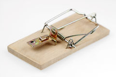 Mouse trap Royalty Free Stock Image