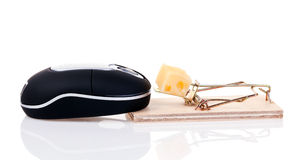 Mouse trap and wireless mouse Stock Images