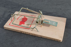 Mouse trap Stock Photography