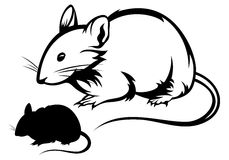 Mouse vector. Rat black and white outline and silhouette Stock Images