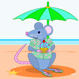 Mouse wearing a blouse Royalty Free Stock Photography
