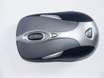Mouse11. The image of the computer mouse on a homogeneous background Stock Image