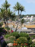 Mousehole Gardens. Gardens at Mousehole village, Cornwall (UK Stock Photography