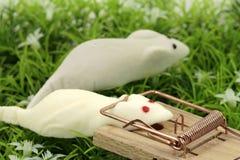 Mouses конфеты Стоковые Изображения RF