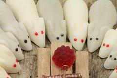Mouses конфеты Стоковое фото RF