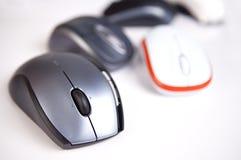 mouses Стоковая Фотография RF