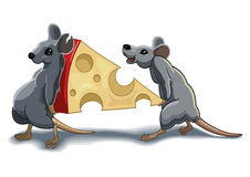 Mouses. Two mouses carry piece of the cheese Stock Photography