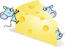 Mouses auf Käse - nette Karikaturillustration Lizenzfreie Stockfotografie