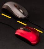Mouses em uma estrada Foto de Stock Royalty Free